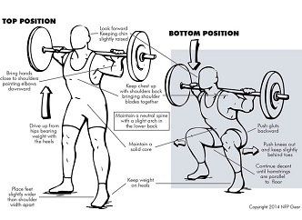 Squats: 8 Reasons to Do This Misunderstood Exercise ...